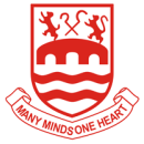 Chelmsford City team logo